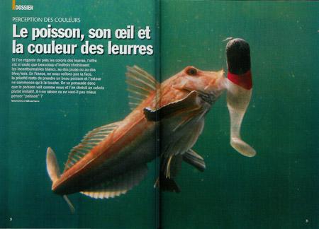 Le poisson, son oeil et la couleur des leurres
