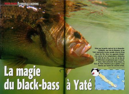 Black-bass au lac yaté - Nouvelle-Calédonie