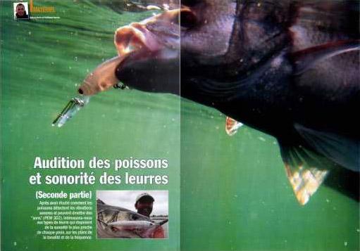 PEM 303 - Audition des poissons et sonorité des leurres