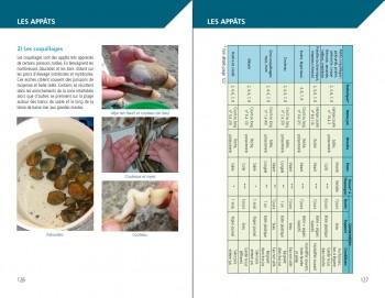 Exemple de pages PRÉSENTATION DES APPÂTS