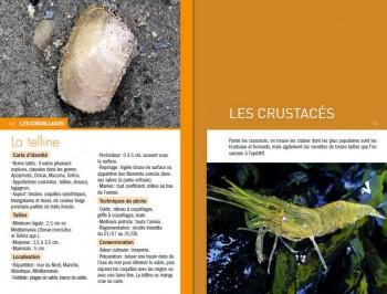 """Exemple de page """"Les coquillages / Les crustacés"""""""