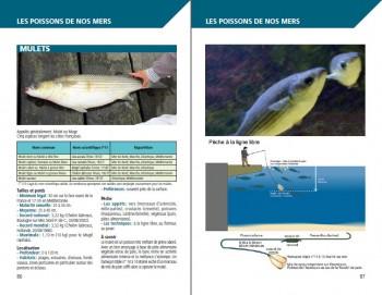 """Exemple de page """"Les poissons"""""""